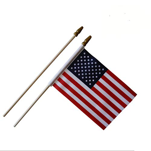 Afoxsos USA Stick Flagge - 12 Pcs Pack American 10,2 x 15,2 cm Mini Handheld Flaggen für 4. Juli Independence Day Celebration - Confederate Polyester