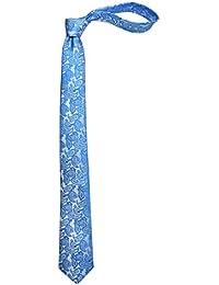 Robelli Deluxe Slim & Stylish Satin Paisley Neck Tie