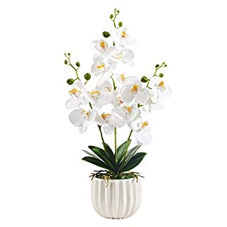 Alicemall Lifelike Real Touch Artificial Phalaenopsis Orchid Arrangement with Decorative Flower Pot (Yellow)