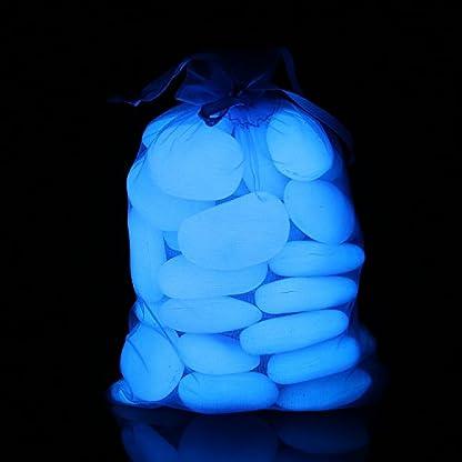 Glow in the Dark Garden Pebbles,Decorative Glow Stones,Fish Tank Aquarium Gravel,Glow Rocks for Flower Pot Outdoor… 7