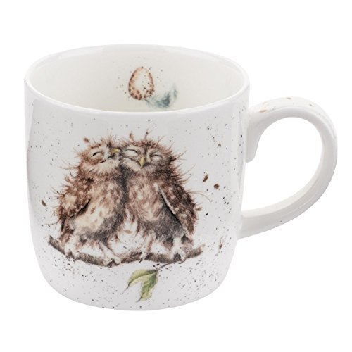 Wrendale Birds of a Feather (Owl) Royal Worcester Fine Porcelain