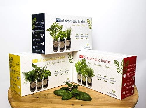 Zoom IMG-5 cultivea set completo fai crescere