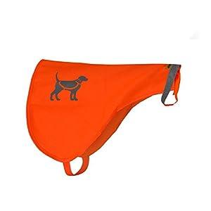 HQRP Gilet de sécurité orange réfléchissant pour chiens pour la protection des animaux d'accidents