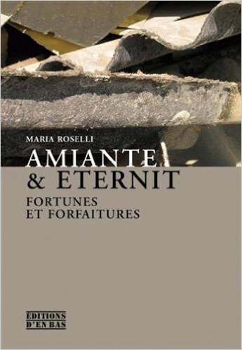 Amiante & Eternit : Fortunes et forfaitures de Maria Roselli,Marianne Enckell (Traduction) ( 8 septembre 2008 )