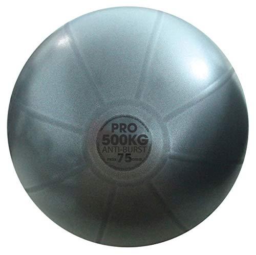 Fitness Mad Gymnastikball reißfest, 300 kg 75 cm