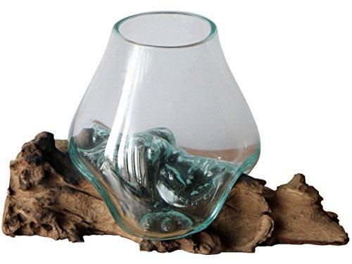 Geschenk Deko Einzigartige Gamal Wurzelholz Glasvase B-Ware Ø Glas 15-16 cm Wurzel Holz Teakholz Vase Glas M