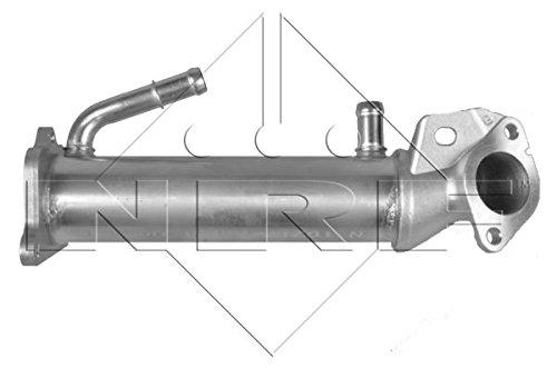 NRF 48014 Agr-Ventile (Ford Ranger Auspuff)