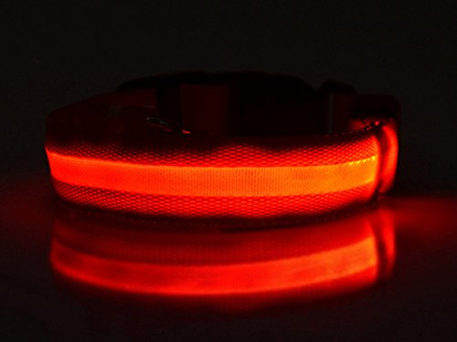 bxt-led-nylon-pet-dog-collar-night-safety-led-light-up-flashing-glow-in-the-dark-lighted-dog-collars