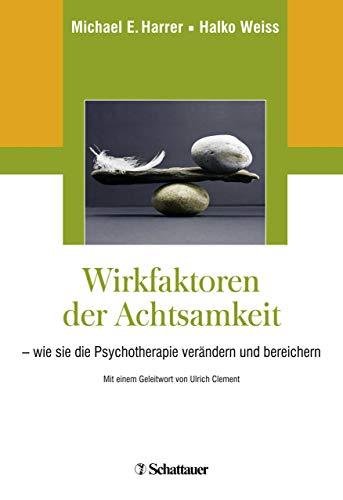 Bereichern Behandlung (Wirkfaktoren der Achtsamkeit: - wie sie die Psychotherapie verändern und bereichern)