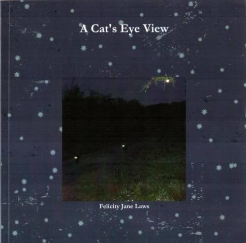 A Cat's Eye View