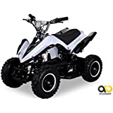 Mini Elektro Kinder Racer 800 Watt ATV Pocket Quad (weiß)