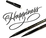 Brush Pen Pennarello Nero a Punta Doppia per Lettering Penne Calligrafia. Pennarelli Doppia Punta Fine e Punta Grossa a Pennello Marker Nero per Disegno (set di 2)