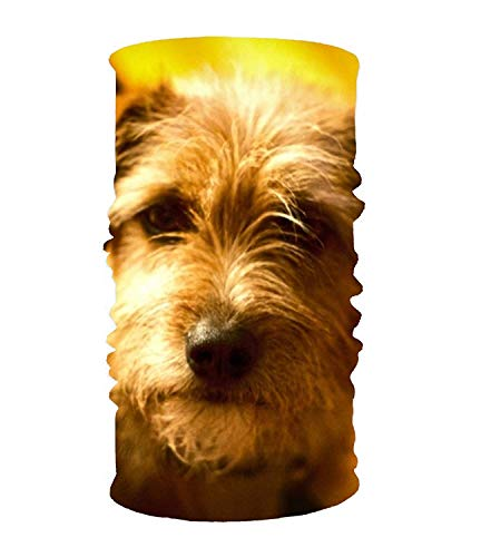 Voxpkrs Outdoor Stirnband, Elastic Seamless Scarf Couch Potato Dogs Sport Headwear for Men & Women - Wolle-liner Mäntel Mit