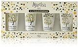 MARILOU BIO Coffret Soin Visage à l'Huile d'Argan : 4 produits crème de jour, crème de nuit, gommage et crème mains - Gamme Argan