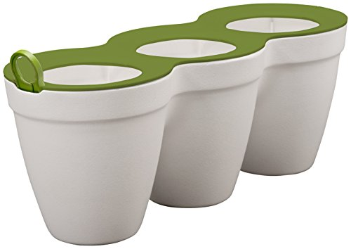 Curver Cozies Pots Aromatiques Herbes Planter Trio, Blanc/Vert, 33 x 12 x 13 cm