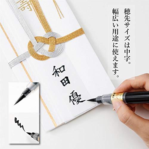 Zoom IMG-2 pentel fude pen ricaricabile inchiostro