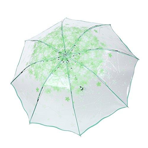 Wingbind Transparenter Regenschirm Kirschblüte-Blumenmuster-tragbarer Licht-drei faltender Regenschirm für Frauen-Mädchen