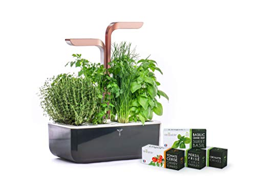 Potager Véritable SMART Copper - Technologie ADAPT' LIGHT - Jardin...
