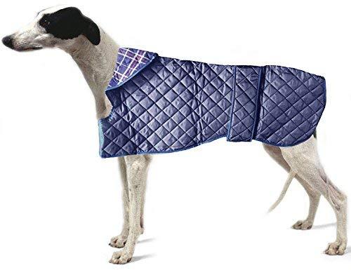 Dogs & - Abrigo Perro Forma co. Acolchado Azul Ligero