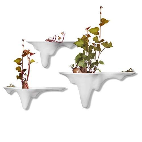 HandWerk Dekoration Wohnzimmer Kreative Hydrokulturpflanzen Wanddekorationen Töpfe Hängen Garten Anhänger Hängen Pflanzen Töpfe Schmuck -