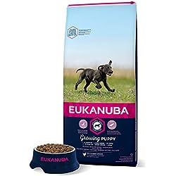 Eukanuba - Croquettes pour chiot de Grande Race - 100% complet et équilibré ; Sans arôme artificiel ajouté, colorant artificiel ajouté ; Riche en poulet - calcium fibres FOS DHA - sac fermable de 15kg
