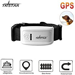 TKSTAR Haustier GPS Tracker mit Halsband, Hund Anti Verlorene GPS Ortung Echtzeit GPS Tracking Locator, Hundehalsband Training Outdoor Echtzeit GPS Tracker mit Free APP & Web Platform TK909