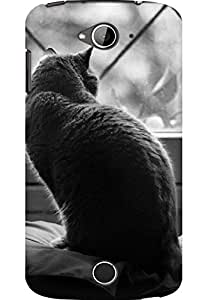 AMEZ designer printed 3d premium high quality back case cover for Acer Liquid Z530 (out in the window cat)