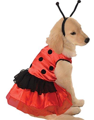 Hunde Fasching Halloween Karneval Kostüm Marienkäfer Medium