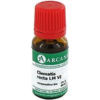 CLEMATIS RECTA LM 06 Dilution 10 ml Dilution preisvergleich bei billige-tabletten.eu