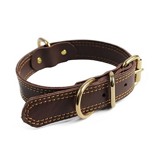 Bliqniq Hundehalsband Leder breit braun für Kleine und große Hunde, Breit: 3cm Länge 75cm, Halsumfang: 56-67 verstellbar