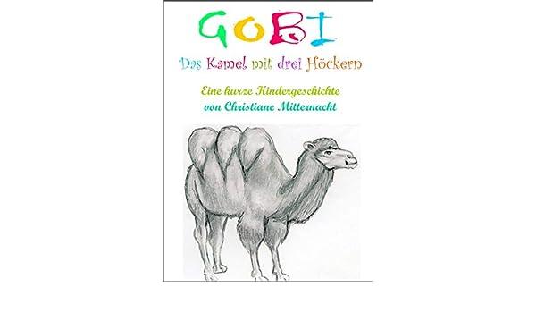 Gobi, das Kamel mit drei Höckern: Eine kurze