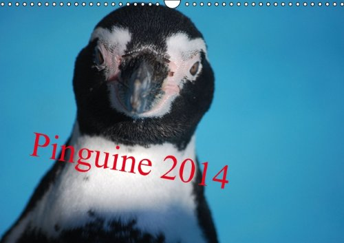 Pinguine 2014 (Wandkalender 2014 DIN A3 quer): Kleine Kerle im Frack (Monatskalender, 14 Seiten)