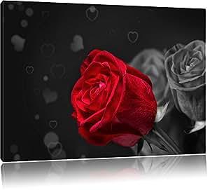 rose rosse per San Valentino nero / bianco Taglia: 60x40 su tela, enorme XXL Immagini completamente Pagina con la barella, stampe d'arte su murale con telaio, più economico di pittura o pittura ad olio, nessun manifesto o poster