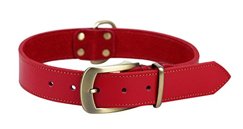 Pentaq pour animal domestique Chien Cuir souple Collier réglable pour chiens de formation, col 53cm à 63cm et 3.5cm de large Ceinture de mode Style Collier pour moyen/grand chien