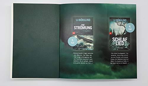 Wundbrand: Kriminalroman (Die Rönning/Stilton-Serie, Band 5): Alle Infos bei Amazon