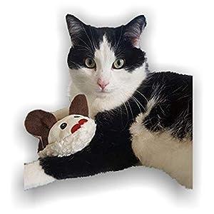 LunaChild Handmade Maus Spielzeug WUNSCHNAME Katzenspielzeug Baldrian Katzenminze Name Rassel braun Katze Unikat personalisiert persönliches Geschenk