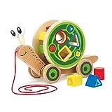 Hape E0349 - Nauw slak, natrekspeelgoed, incl. kleur- en vormensorteerder, van hout, vanaf 12 maanden, Veekleurig