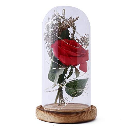Die Geschenk-Schönheit des Frauen-Valentinsgrußes und das Tier LED, die rote Rose mit gefallenen Blumenblättern in Einer Glashaube auf Einer hölzernen Unterseite beleuchtet