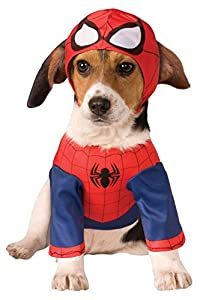 Rubie's Official Spider Girl