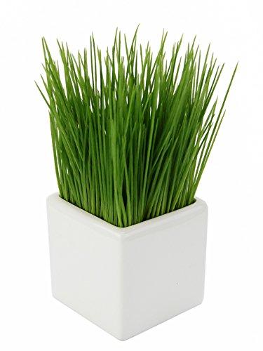 Flair Flower Pflanze Topf, Künstliches, Kunst-Gras, Kunststoff, Keramik, grün, 9x9x22 cm