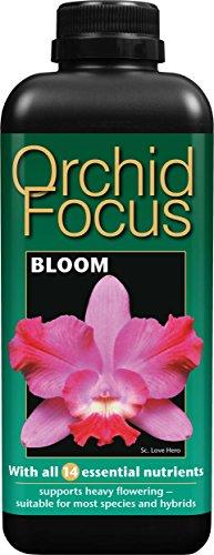 super-fertilizzante-liquido-concentrato-orchid-focus-fioritura-1-litro