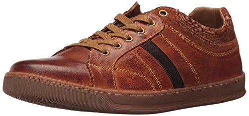 Steve Madden Mens Calahan Sneaker Dark Tan