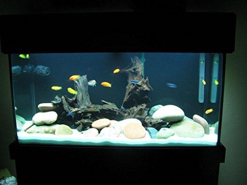 Colourful Aquarium Sugar Type White Color Sand Gravel 3Kg