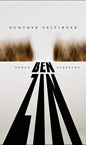 Buchseite und Rezensionen zu 'Benzin: Roman' von Gunther Geltinger