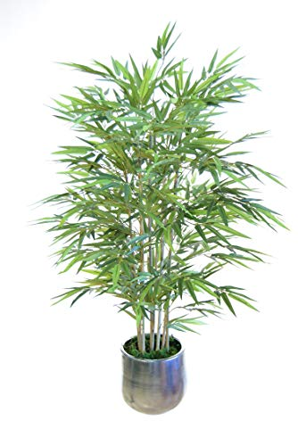 Utilizamos los mejores materiales en su elaboración, para conseguir un producto de la máxima calidad, lo más parecido a el bambú natural. Muy recomendadas para decorar tu casa, dar un toque de elegancia en la oficina, quedan perfectas en una recepció...