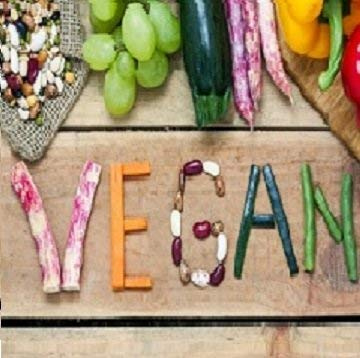 Quemagrasas-Natural-Termognico-Adelgazante-Fat-Burner-Supresor-de-Apetito-Ingredientes-100-Naturales-120-Cpsulas-Vegetal-Alta-Concentracin-Certificado-VEGANO-Fabricado-en-CE-N2-Natural-Nutrition
