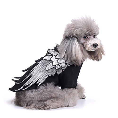 üme Angel Wings Halloween Fasching Sweatshirt Fleecejacke Hundejacke Kostüm für Frühling Herbst Winter Schwarz M (Herbst Halloween Kostüm)