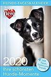 Hunde-Tageskalender 2020