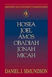 Abingdon Old Testament Commentary - Hosea, Joel, Amos, Obadiah, Jonah, Micah: Minor Prophets (Abingdon Old Testament Commentaries)