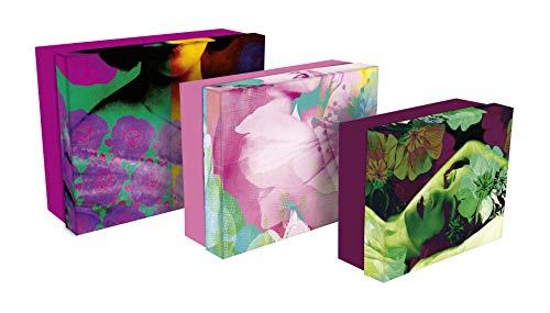 Clairefontaine 115465C - Un lot de 3 boites gigognes rectangulaires Egérie dimensions 44 x 34 cm, 38 x 31 cm et 32 x 26 cm